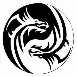Dragon Yin Yang Heat Transfer